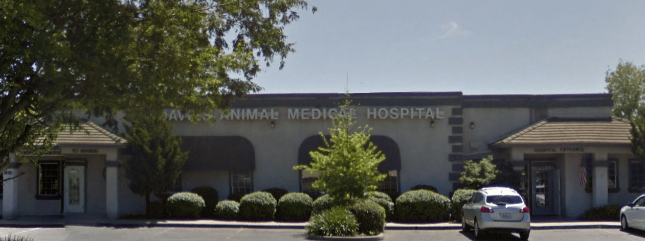 Hospital Tour - Davies Animal Hospital