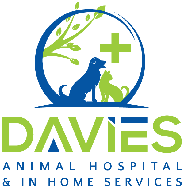 Your Family Veterinarian In Yuba City Ca Davies Animal Hospital